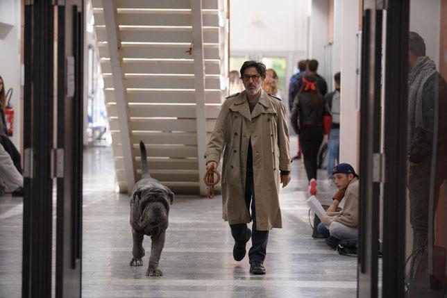 Contre l'avis de sa famille, Yvan Attal décide d'adopter un chien abandonné, qu'il surnomme Stupide (©StudioCanal).