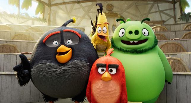 Red, le chef des oiseaux, entouré de Bombe, le gros volatile gris, de Chuck, le canari hyperactif, et de Leonard, le chef des cochons (©Sony Pictures).