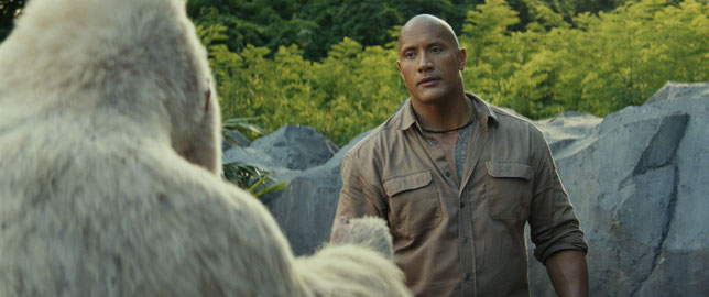 Le primatologue Dwayne Johnson s'est pris d'affection pour George le gorille albinos (de dos) (©Warner Bros).