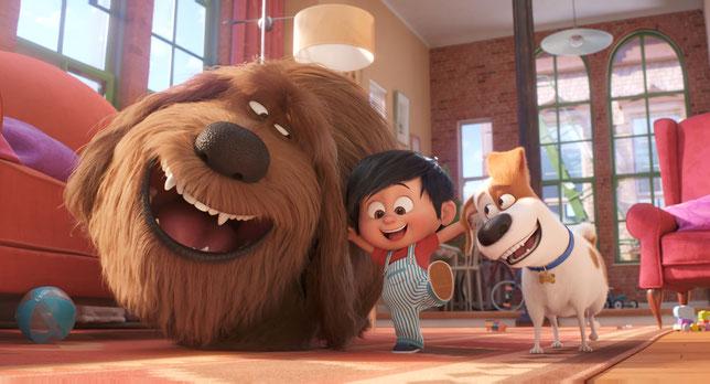 Max le petit terrier jack russell (à droite) et Duke le gros bâtard accompagnent les premiers pas de Liam, l'enfant du foyer (©UPI/Illumination).