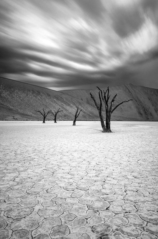 Dead Vlei in monochrome with blurred sky, Sossusvlei, Namib Desert, Namib Naukluft Park, Namibia, 1207x1820px