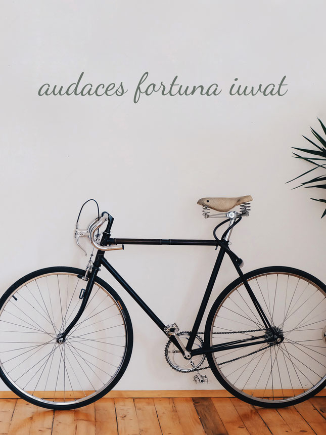 Audaces fortuna iuvat, black vinyl wall art.