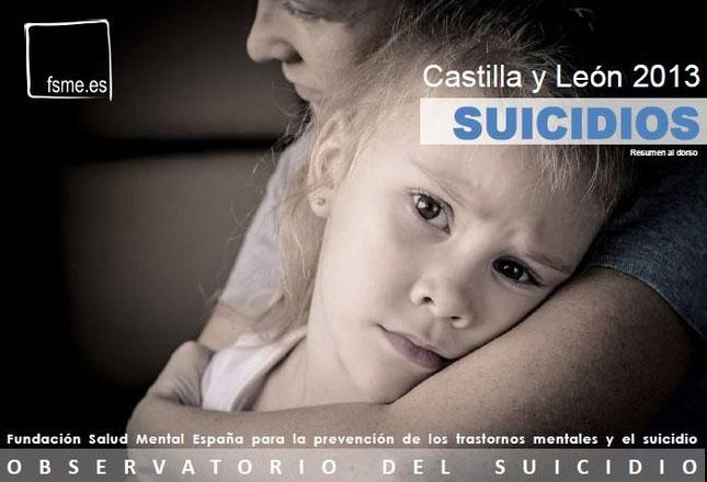 Castilla y León. Suicidios. 2013
