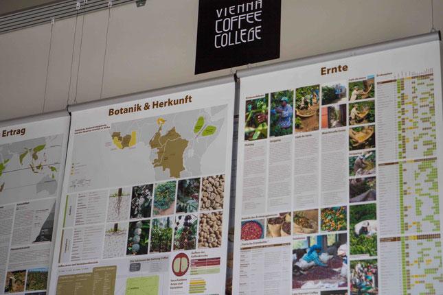 Kaffeeinformationen auf Wandtafeln im Vienna Coffee College