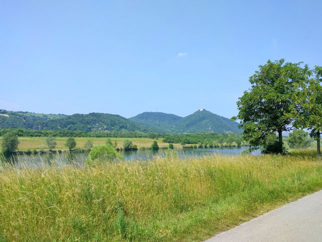 Start an der Donau entlang raus aus Wien