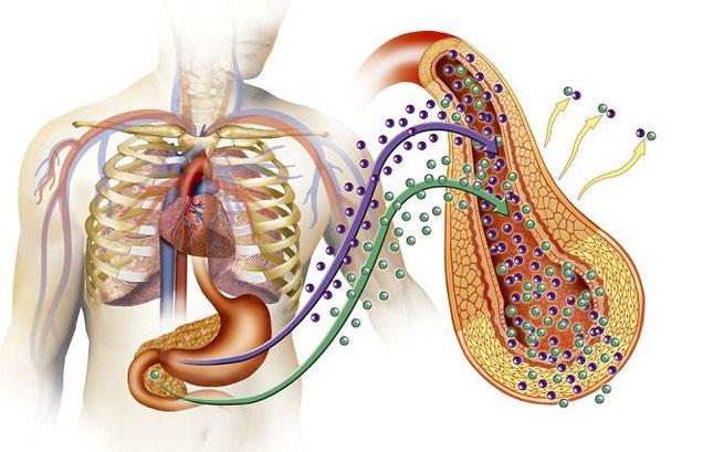 ¿Cómo saber si estás padeciendo prediabetes?