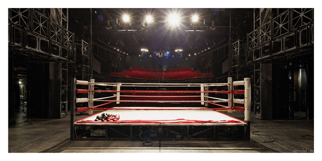 rocky - the musical, hamburg.DE // photo and copyright by manfred h. vogel / mhvogel.de