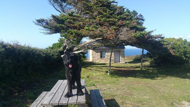 Reisen durch die Bretagne