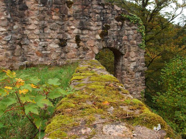 Ruine Unter-Falkenstein, Schramberg