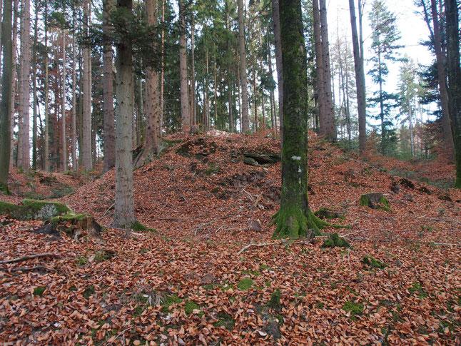 Typischer Burghügel mit Graben