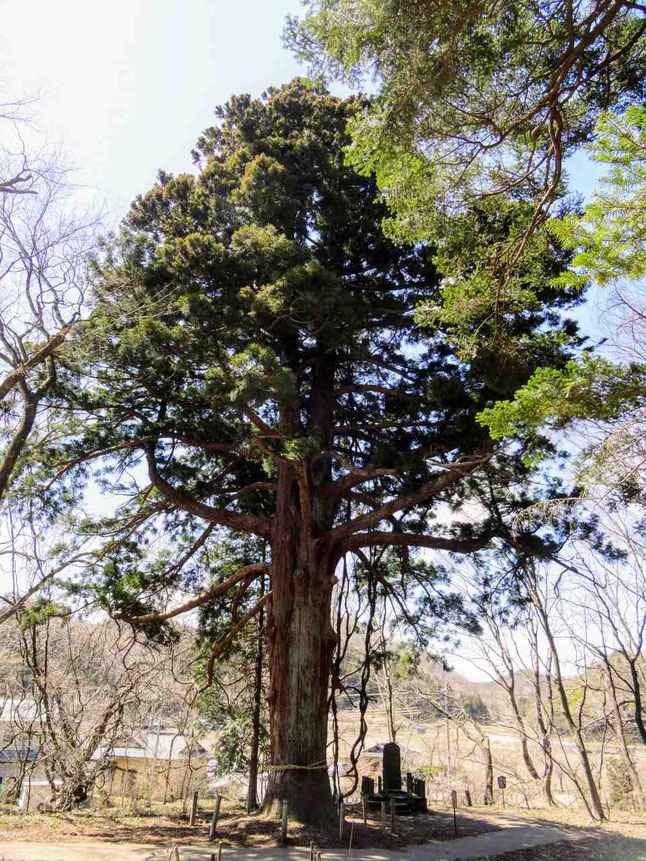 国指定史跡白河関跡と白河関の森公園