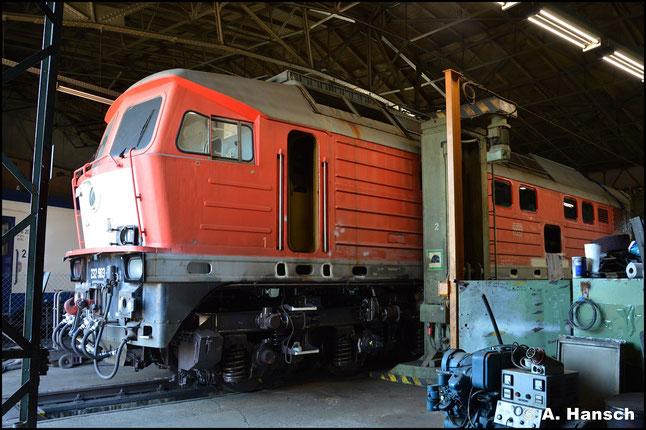 Die Lok gehört dem Unternehmen Lok OST und im SEM werden für eine neue Frist nötige Arbeiten an ihr durchgeführt
