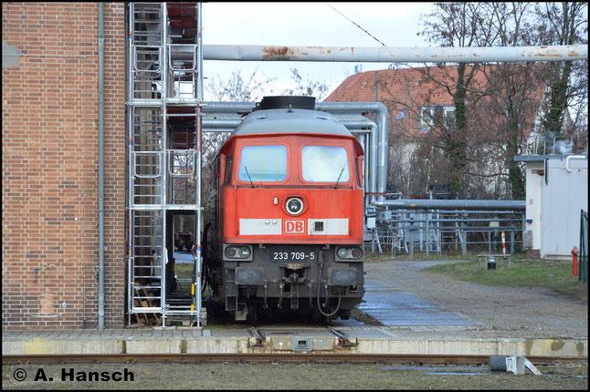 Am 12. Februar 2019 steht die Lok im Werk Cottbus und ist z-gestellt