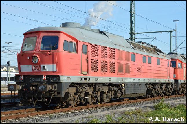233 458-9 ist eine von vielen 233ern, die am 18. Juni 2019 am Werk Chemnitz stehen. Hier ist auch ein Stillstandsmanagement der DB zu finden
