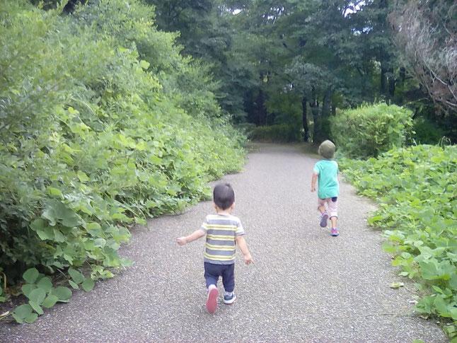 明日香国定公園で走る子供