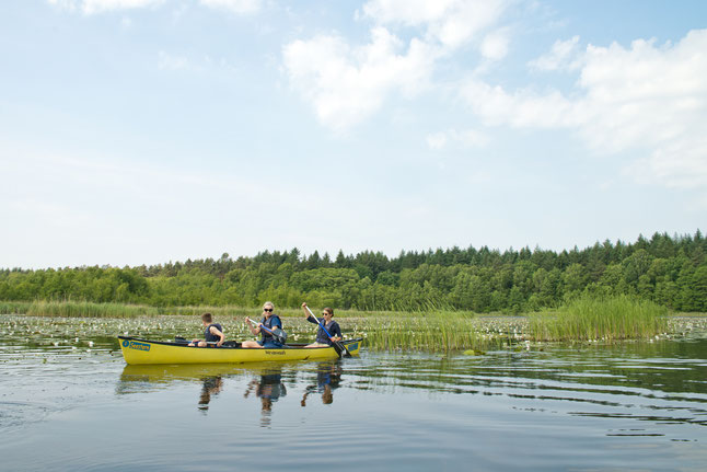 In der Mecklenburgischen Seenplatte bleiben Paddler flexibel – viele Verleiher bringen das Boot an den Wunschort oder holen es ab. Bildnachweis: 1000seen.de/Christin Drühl