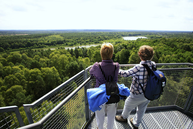 Vom 55 Meter hohen Käflingsbergturm genießen Naturfans den Panoramablick über den Müritz-Nationalpark/Mecklenburgische Seenplatte. Bildnachweis: 1000seen.de/Peter Frischmuth