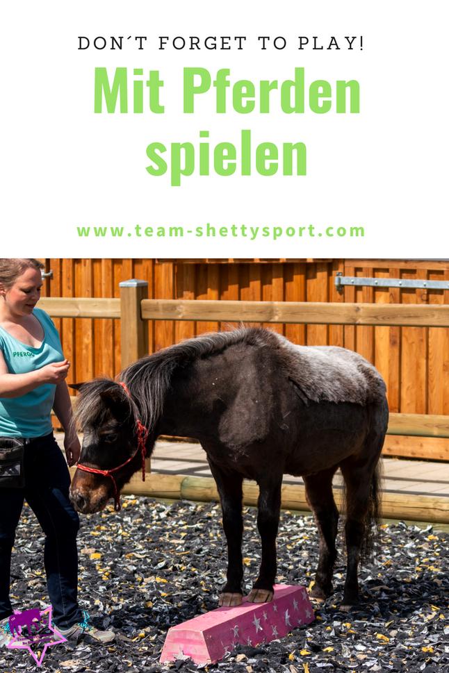 Spielen mit Pferden: Lern-und Konzentrationsspiele und Koordinationsspiele