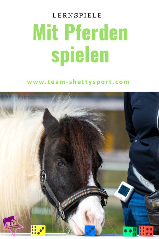 Spielen mit Pferden: Lern-und Konzentrationsspiele