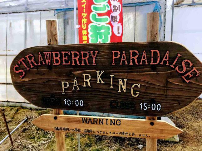 須賀川市 ストロベリーパラダイス