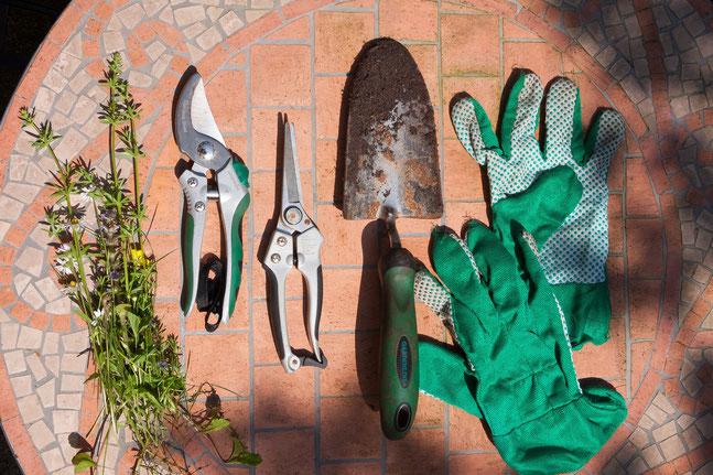 お庭の管理をします