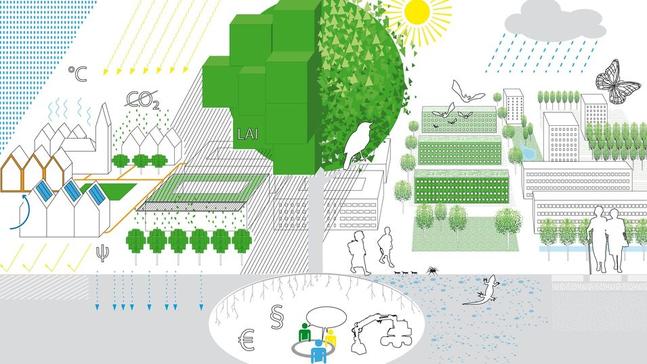 Stadtökologie und Klimaanpassung