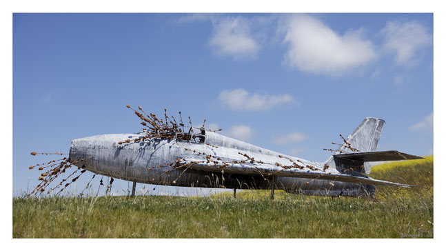 airplane by anselm kiefer @ the donum estate, sonoma.CA // photo and copyright by manfred h. vogel / mhvogel.de