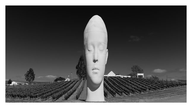 sanna by jaume plensa @ the donum estate, sonoma.CA // photo and copyright by manfred h. vogel / mhvogel.de