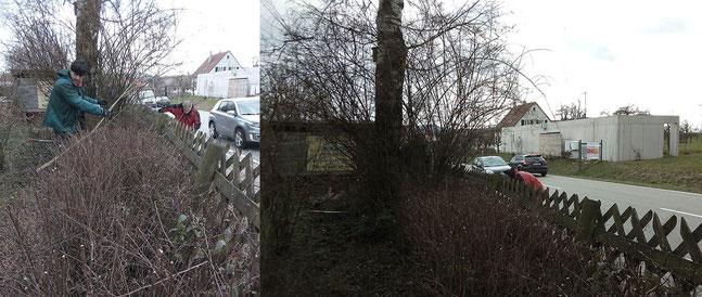 Vereinsgarten aufräumen Foto: K-H Kuhn