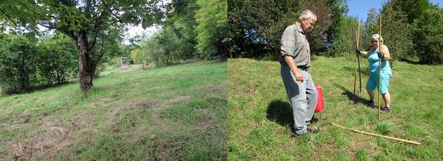 Hang Gras auf Reihensetzen  Foto: K-H Kuhn