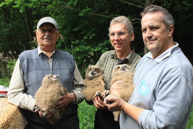 Werner Peschel, Wilfried Schädler und Jörg Kube(v.Links nach Rechts) mit je einem beringtem Uhujungvogel)
