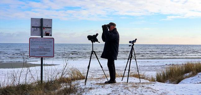 Mittwinterzählung im Norden der Insel Usedom / Foto: NABU Insel Usedom, W. Becker