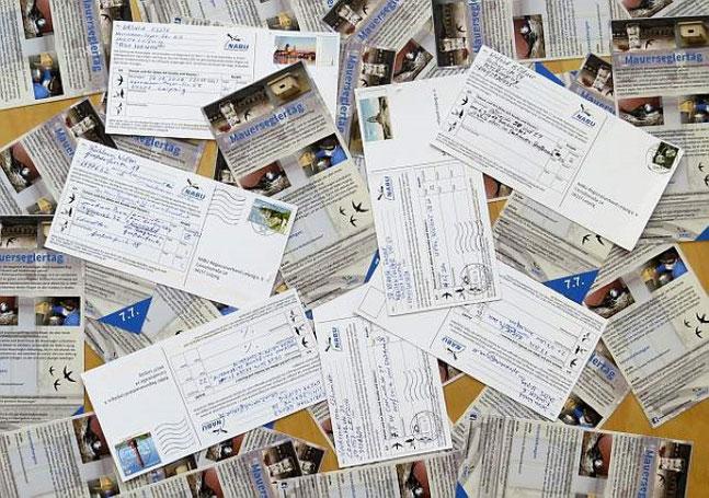 Zählkarten mit wertvollen Mauersegler- und Schwalbenbeobachtungen wurden von zahlreichen Vogelfreunden im ganzen Stadtgebiet ausgefüllt und dem NABU geschickt. Foto: NABU Leipzig