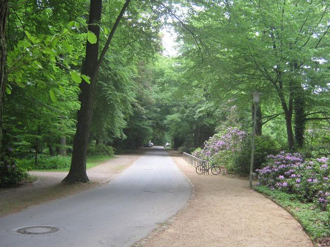 Zufahrt zur Naturheilpraxis über die Badstraße