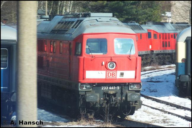 """Eine von inzwischen elf im AW Chemnitz abgestellten """"Ludmillas"""" ist 233 441-5, die am 6. März 2013 aus dem RE nach Dresden fotografiert werden konnte"""