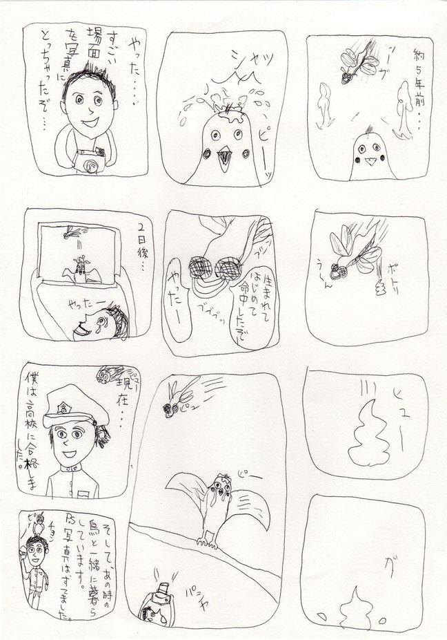 虫と鳥と少年/第一話-出会い-