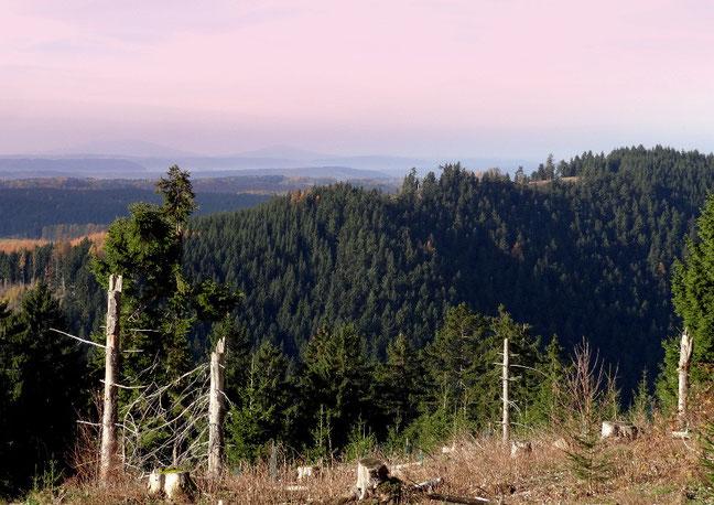 Blick vom Schiefergebirge zu den Basaltkuppen der Gleichberge