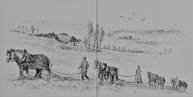 """Rechts im Hintergrund die angedachte Dorf Lage """"HARBOLDESSEN"""" im Gericht Greene"""