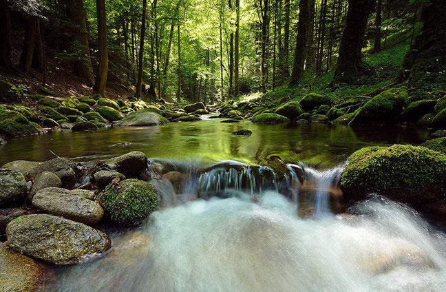 Der Grobbach unterhalb des Geroldsauer Wasserfalls