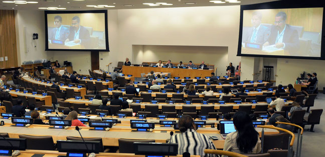 19th ICP plenary. Photo Credit: UN Division for Ocean Affairs and the Law of the Sea (UN-DOALOS)