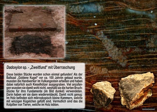 Grabungsteam Chemnitz Zweitfund