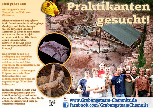 Praktikum Geologie Paläontologie im Grabungsteam Chemnitz