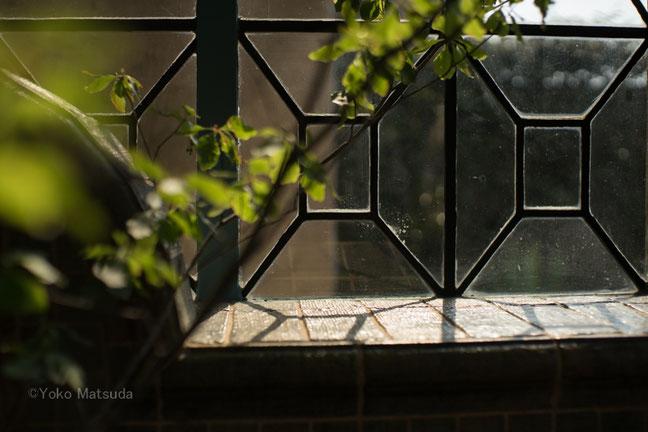 まとりかりあ写真教室 光の窓の写真