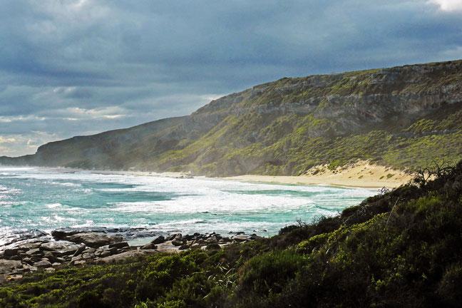 Cliffs with sea mist