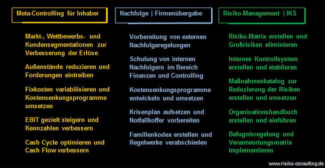 Meta-Controlling & Risiko-Management für Familienunternehmer - Projektbeispiele I