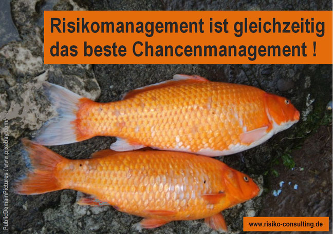 Risiko-Consulting - Im Mittelstand ist Risikomanagament auch Chancenmanagement