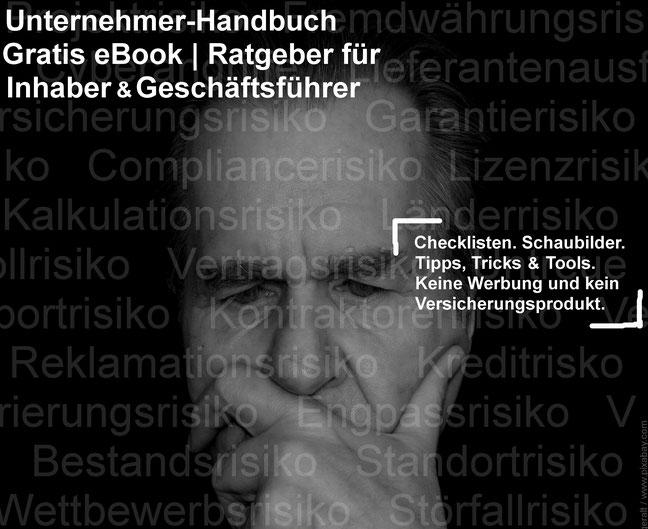 """Risiko-Consulting: Gratis eBook: """"Haftungsschutz für Inhaber und Geschäftsführer"""" - Unternehmer-Handbuch"""