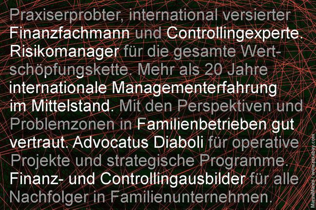 Risiko-Consulting: Vertrauliche Controlling-Beratung für moderne Familienunternehmen