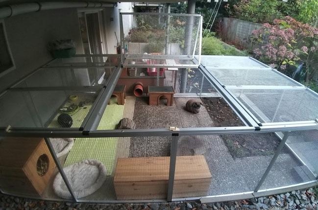 Kleintiergehege/Kaninchengehege