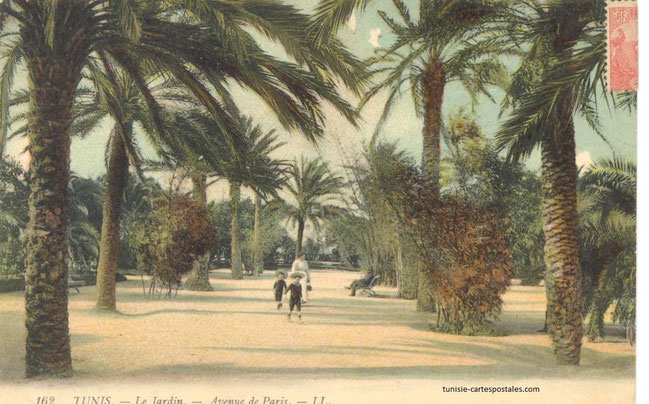 Actuel Jardin Habib Thameur